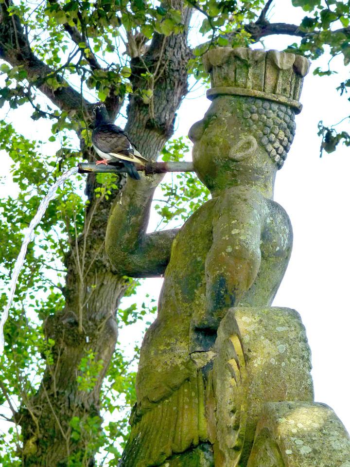 Angra - Jardim Duque da Terceira (45).jpg