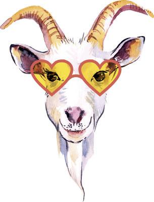 A Cabra.jpg