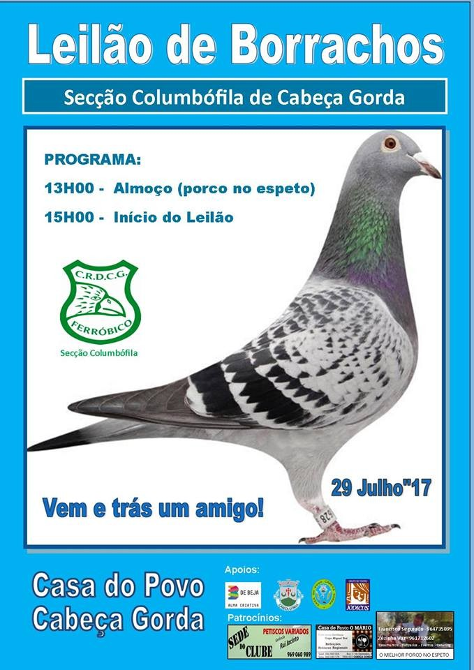 Leilão Cabeça Gorda.jpg