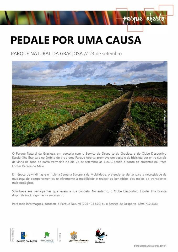 pedalar.jpg