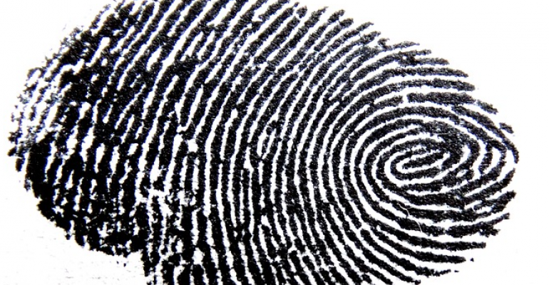 fingerprint_0.png