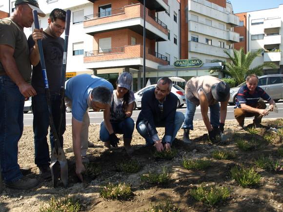 arranjo_jardins_rotunda_epralima (12)