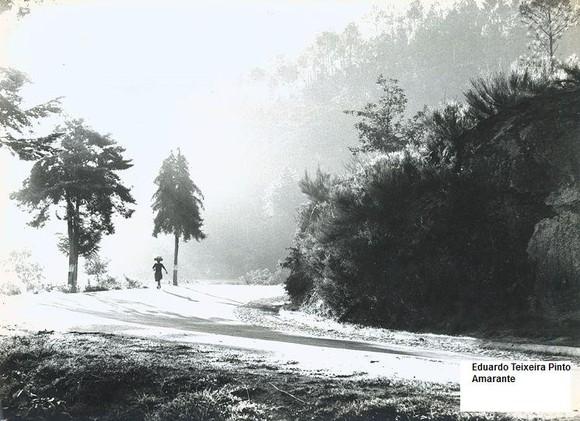 14 - Na curva da estrada