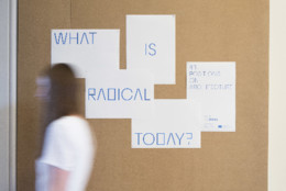 What Is Radical Today 002 © Agnese Sanvito.JPG