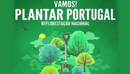 221120162212-608-PlantarPortugal.jpg