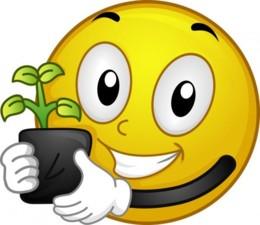 plantar.jpg