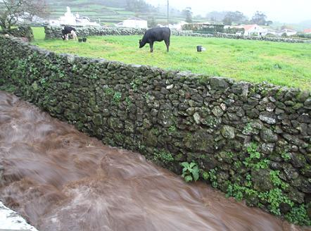 A água em força, esta manhã na Ribeira Manuel Vieira (Santa Bárbara)...