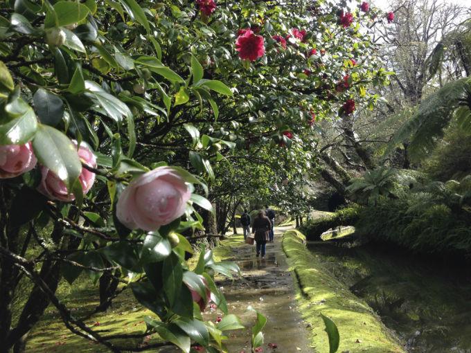 parque terra nostra jardim