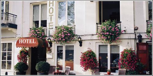 Hostel            14987871_aWrqb