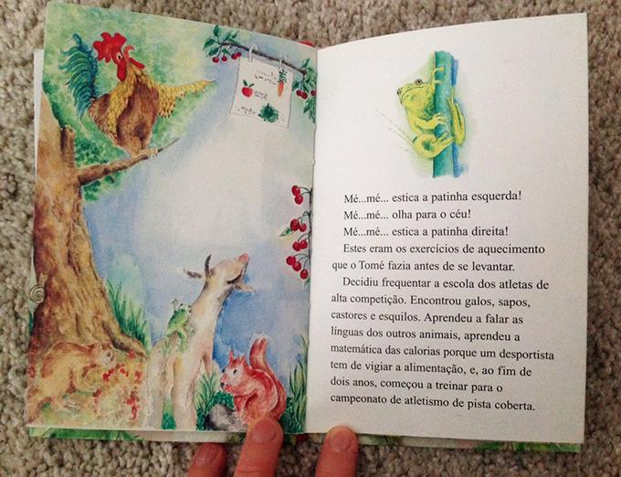 livro-lara-4