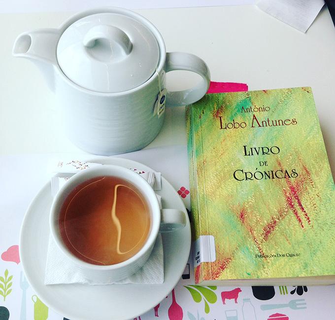 livro de crónicas António Lobo Antunes