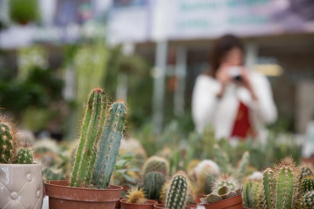 Sessão Fotográfica Shot Fotografia no Horto do Campo Grande